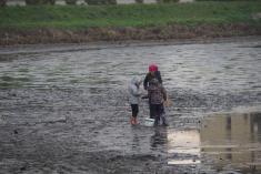 Malí rybáři nastoupili potěch dospělých