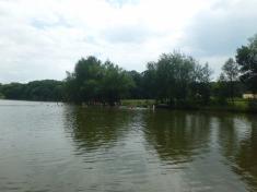 Plavání startuje
